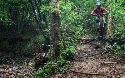 Lugnesie Park: una Trail Area in Friuli a pochi km da Udine